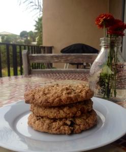 gluten free oatmeal cookies 2